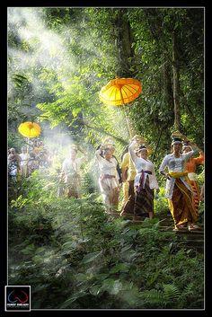 great atmosphere...Bali ❀  Bali Floating Leaf Eco-Retreat ❀ http://balifloatingleaf.com ❀