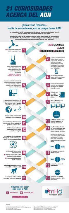 ¿Qué sabes sobre el ADN? Aquí te dejamos 21 curiosidades. Teaching Plan, Ap Biology, Med Student, Science, Med School, Neurology, Biochemistry, Nurse Life, Genetics