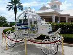 horse and carriage (Disney Wedding theme? Wedding Looks, Perfect Wedding, Dream Wedding, Disney Inspired Wedding, Disney Weddings, Wedding Carriage, Princess Carriage, Horse Drawn, Disney Dream