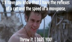 Ace Ventura: When Nature Calls Funny Memes, Hilarious, Jokes, Ace Ventura Movies, Harry Potter Toms, Divergent Hunger Games, Shawn Mendez, Favorite Movie Quotes, I Dare You
