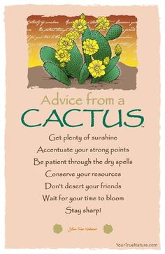 Each postcard says: Advice from a Cactus Get plenty of sunshine Accentuate your . - Citations - Each postcard says: Advice from a Cactus Get plenty of sunshine Accentuate your strong points Be pat - Cactus Quotes, Plants Quotes, Cactus Background, Cactus Paint, Cactus Wallpaper, Bloom Quotes, Card Sentiments, Advice Quotes, Faith Quotes