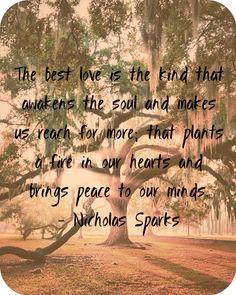 Just Nicholas Sparks