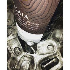 How to #close #summer with #style... #LaRoncaia #Friulano  #lastday #wine #whitewine #drinkitalian #partytime  #elegance #winetime #staycool #italianwine #italianbeauty #partyallnight #friends #fun #wine #moments #worldwide #togetherwecan #enjoylife #happydays #wineoclock