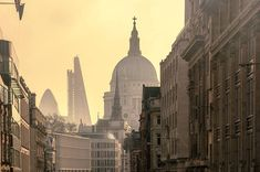 Saint Paul's, the Cheesgrater and the Gherkin