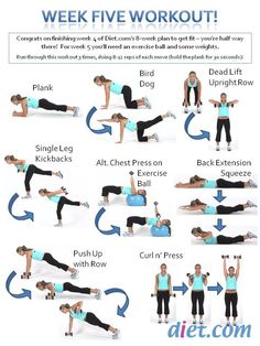 Week Five Workout Plan 5 - Healthy Fitness Full Body Training Ab Sport Fitness, Fitness Diet, Fitness Motivation, Health Fitness, Fitness Gear, Fun Workouts, At Home Workouts, Ball Workouts, Workout Exercises