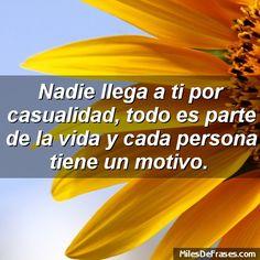 Nadie llega a ti por casualidad todo es parte de la vida y cada persona tiene un motivo.