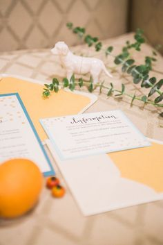 pirouettepaper.com | Pirouette Paper Company | Meghan Elise Photography | Intimate Wedding Details | Wedding Stationery and Calligraphy by Kaylyn Sherman