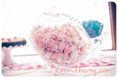 Welcome Baby B! | Nautical Baby Shower | Zoom Theory Photography