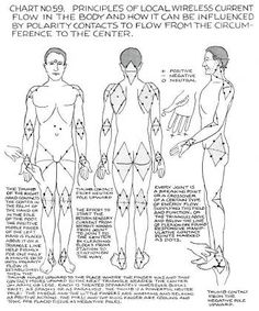 Image result for polarity therapy