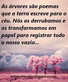 blog Bella Brasil