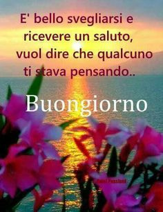 Sveglia Italian Memes, Italian Quotes, Romantic Good Morning Messages, Good Morning Quotes, Italian Greetings, Italian Phrases, Italian Language, Day For Night, New Years Eve Party