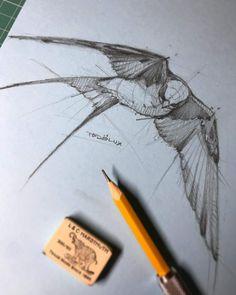 59 Ideas Bird Drawing Pencil Ink For 2019 Bird Drawings, Animal Drawings, Cool Drawings, Drawing Sketches, Pencil Drawings, Drawing Ideas, Sketching, Vogel Tattoo Rippen, Desenho Tattoo