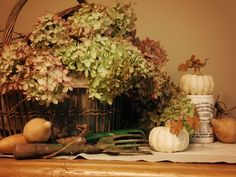 Autumn Vignette - Basket with Hydrangeas - White Pumpkins - Pale Burnt Orange Wall - from The Enchanted Home