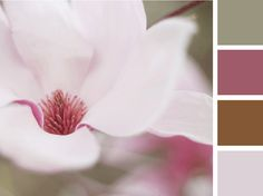 Presentation Color Palette - The Flower