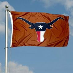 Amazon.com : Texas Longhorn Flag TX State Flag Colors : Outdoor ...