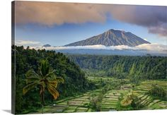 Bali, Rendang, View of Rice Terraces and Gunung Agung - Google zoeken