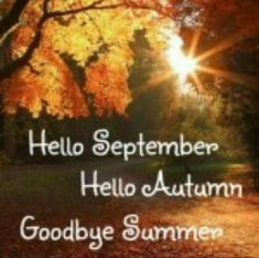 Sweet September, Hello September, Falling Leaves, Falling In Love, Halloween Christmas, Happy Halloween, Autumnal Equinox, Fall Fruits, Welcome Fall