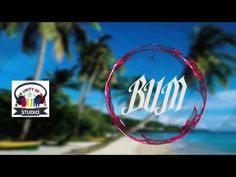 BUM_Dolphin + Chiken X Makngpuji(video music)