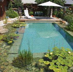 Natural Swimming Ponds, Swimming Pools Backyard, Swimming Pool Designs, Pool Landscaping, Natural Pools, Lap Pools, Indoor Pools, Pool Decks, Patio Interior