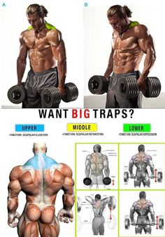 get big traps, traps workout, shoulder workout, how to gain muscle, increase muscle mass Fitness Workouts, Weight Training Workouts, Fun Workouts, Fitness Motivation, Gym Fitness, Body Workouts, Fitness Weightloss, Workout Routine For Men, Gym Workout Tips