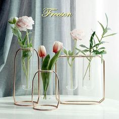 Simple and easy to tend to hydroponic plants. Gorgeous variety of vases adds class to any room or office!