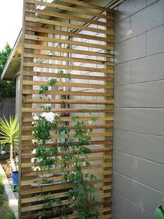 DIY Backyard Pergola Trellis Ideas To Enhance The Outdoor Life (18)