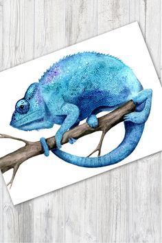 Blue chameleon art - Anita Smith Home Les Reptiles, Amphibians, Art Mural, Wall Art, Reptile Party, 6th Grade Art, Young Animal, Colorful Animals, Animal Projects