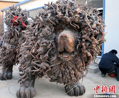 3-ton root carving of Tibetan Mastiff