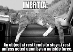 Inertia.