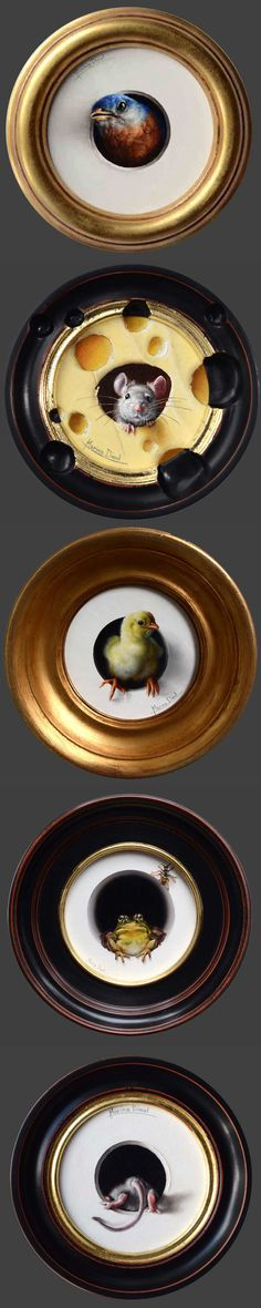 Marina Dieul animal portraits: The Five Most Beautiful Things in the World (this week)   Beekman1802.com
