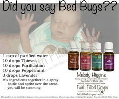 79 Best health BED BUGS (wat r, where they liv, how2 kill
