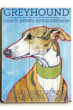 Greyhound lovers dating