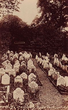 This dog cemetery was located on the north side of Hyde Park and was used for nearly 40 years, around the end of the nineteenth century.