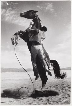 Ernst Haas, Stuntman with mustang on the set of The Misfits, 1960 (52.1976)