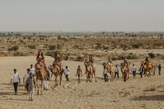 We love the amazing camel processional from this India desert wedding
