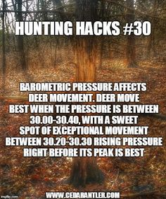 Hunting Hacks, Barometric pressure often determines which days will be best to hunt. Paying close attention to the effects of the pressure can help you determine which days you need to be afield. Whitetail Deer Hunting, Quail Hunting, Deer Hunting Tips, Archery Hunting, Hunting Gear, Coyote Hunting, Hunting Stuff, Pheasant Hunting, Hunting Jokes
