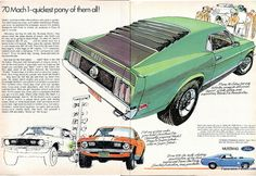 Ford Mustang Mach 1 Ad (October, Mach pony of them all! 1970 Ford Mustang, Mustang Mach 1, Mustang Boss, Mustang Engine, Shelby Mustang, Classic Mustang, Ford Classic Cars, Volkswagen, Vintage Mustang