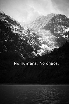 No humans.  No chaos.