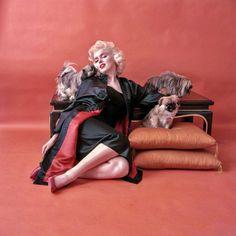 Marilyn photographed by Milton Greene, 1955.❤ #marilynmonroe #miltongreene