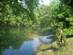 Elk River 2012