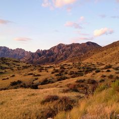 Organ Mountains, NM #organ #mountains #landscape #newmexico
