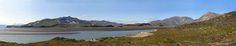X - Nunatta Naasui on-lineusut (Flora Groenlandica online)