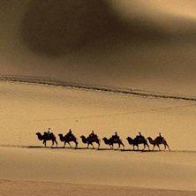 76 immagini di grande formato, realizzate in quattro anni, raccontano l'epico viaggio che portò Marco Polo alla scoperta del lontano Oriente, un viaggio che Yamashita ha voluto ripercorrere per celebrare l'impresa del grande viaggiatore. Acquista il tuo biglietto per il MAO - Museo d'Arte Orientale di Torino!