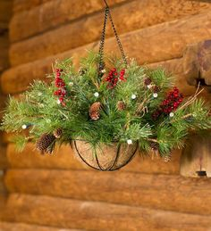 Holiday Hanging Basket | Holiday Greenery | Plow