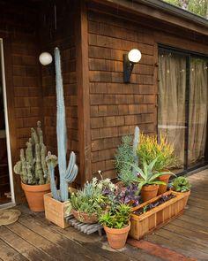 Alison and Jay's Warm and Creative Los Feliz Home