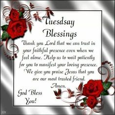 Happy Tuesday Images, Good Morning Tuesday Images, Happy Tuesday Morning, Tuesday Pictures, Happy Tuesday Quotes, Good Morning Funny Pictures, Morning Love Quotes, Good Morning Happy, Good Morning Greetings