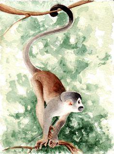 Monkey by ~kikalicia on deviantART