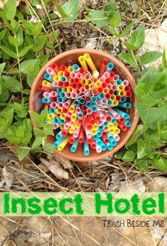 We created a lovely, colorful place for insects to gather in our backyard called an insect hotel. My kids and I had fun making this and have had fun watching it for the past month or so. To Make the Insect Hotel: We used a small clay pot, some smoothie straws (I got mine …
