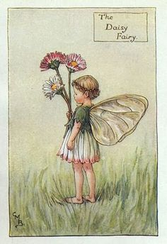 The Daisy Fairy, Cicely Mary Barker                                                                                                                                                                                 Más