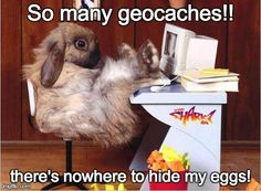 The Easter Bunny has to work extra hard to find hiding spots for his eggs!